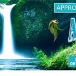 Arthri-Solution et Chondrogen