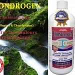 Douleurs articulaires Chondrogen